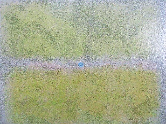 n.lecoq-sans-titre-huile-sur-toile-80x100cm-2013-31